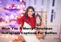 Wish You Merry Christmas Captions